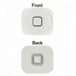 iPhone 5 Hem Knapp (Vit)